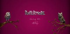 Pottermore, un projet transmedia entre jeu en ligne et énigmes réelles ?