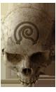 HALO CEA - Crâne Brouillard