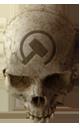 Halo CEA - Crâne FER