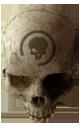 Halo CEA - Crâne Œil Noir
