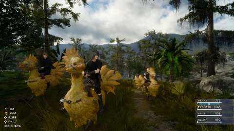 Chocobo ride