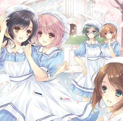Test de Nurse Love Addiction