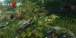 De l'art et de l'importance du jardinage dans Age of Wushu 2