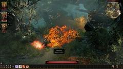 Fire_Cursed_002.jpg