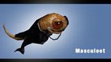 Masculeet