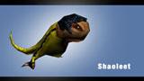 Shaoleet