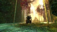 Redécouvrir le monde vivant en attendant le prochain épisode de Guild Wars 2