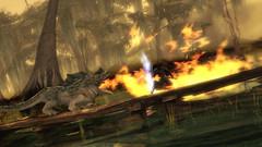 Le guerrier en action - Image202