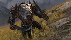 Le guerrier en action - Image223
