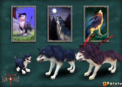 Evolutions du Loup Bleu