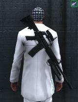 Fusil d'assaut - Singulier NQ8 2