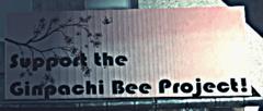 Le projet des abeilles Ginpachi