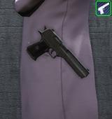 Pistolets - Singulier NQ8 3