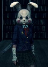 Un lapin....