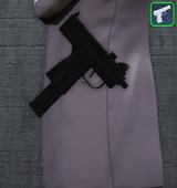 Pistolets - Singulier NQ9 3