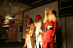 FJV 2008 : Groupe Cosplay