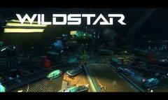 WildStar : Bilan 2013