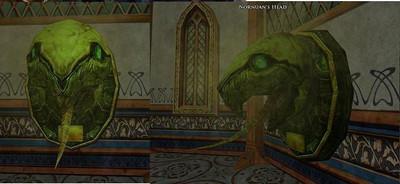 La tortue du raid du livre 7 chap 2 (Nornuan)
