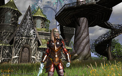 Quand les joueurs ressuscitent Darkfall Online