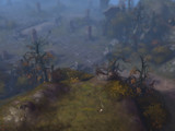 Première série de captures de Diablo 3