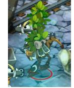 arbre sur dinde