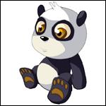 Bébé Pandawa