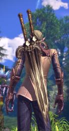 apparence d'une paire d'épée pour guerrier 03