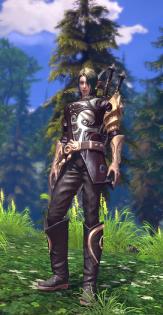 elfe en armure 01