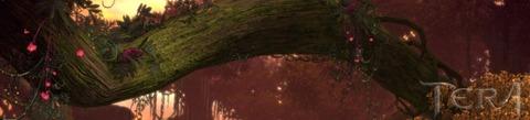 2013-01-tera-crepuscule.jpg