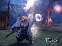 NHN se satisfait du lancement de Tera