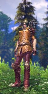 elfe en armure 04