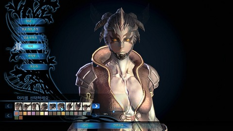 Tera caracter customization option