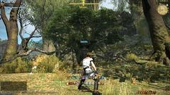 De nouvelles images de Final Fantasy XIV A Realm Reborn