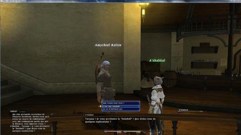Final Fantasy XIV Online - Les Linkshells