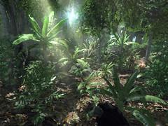 100 000 développeurs amateurs téléchargent le CryEngine3