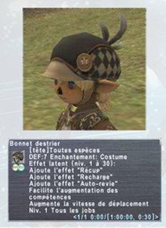 Cliquez sur l'image pour la voir en taille réelle  Nom : Bonnet Destrier.png Taille : 384x528 Poids : 211,2 Ko ID : 131913