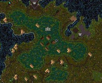 Yew Swamp