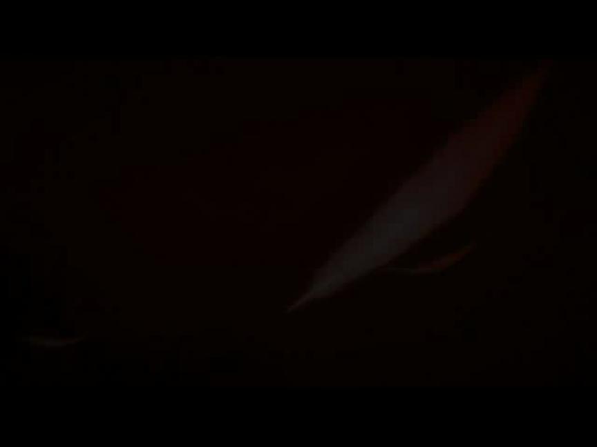 Bande-annonce de Silkroad Online Legend IV Plus