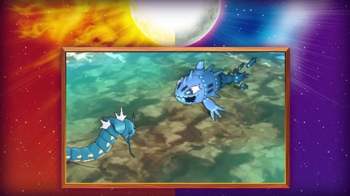 Découverte de nouveaux Pokémon et présentation de la Team Skull