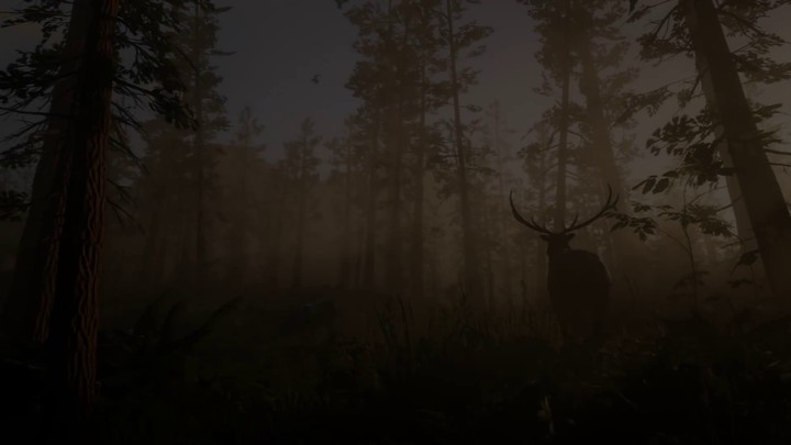 Aperçu du gameplay de Red Dead Redemption II