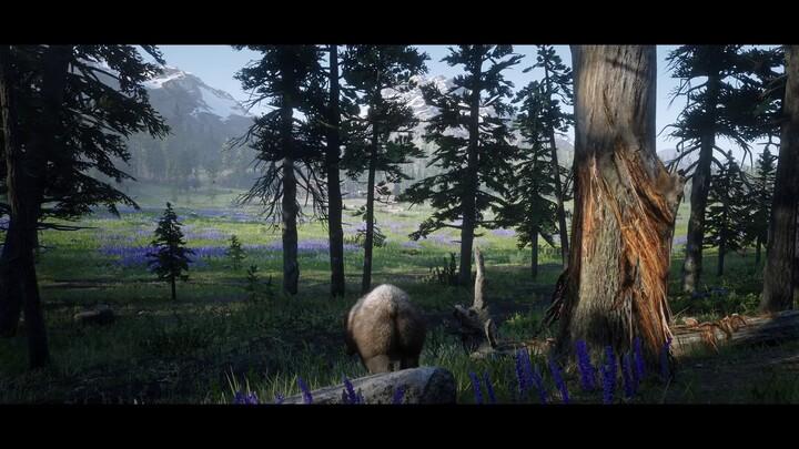 Aperçu de la version PC (améliorée) de Red Dead Redemption 2