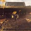 """Bande-annonce """"La tempête approche"""" de Ghost of Tsushima"""