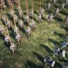 "Aperçu de la saison 3 ""Soldiers of Fortune"" de Conqueror's Blade"