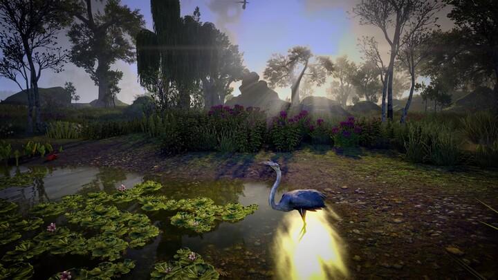 """Bande-annonce de lancement du DLC """"Flames of Ambition"""" d'Elder Scrolls Online: Gates of Oblivion"""