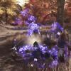 Classe jouable : aperçu du Faucheur (Reaper) de Swords of Legends Online