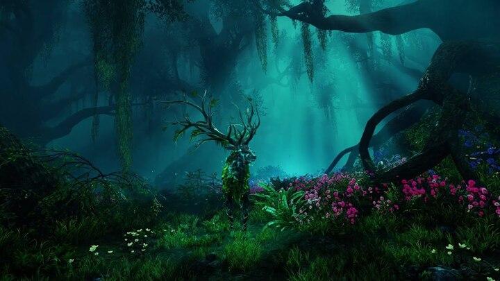 Légendes d'Aeturnum : la Terre Enragée de New World
