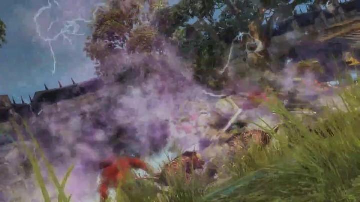 Les combats de Guild Wars 2