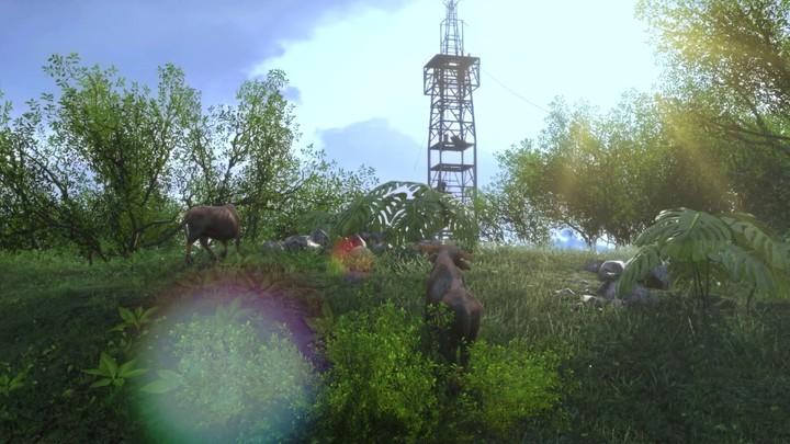 Guide de survie de Far Cry 3 : Rook Islands