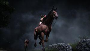Le cheval.jpg