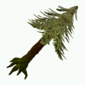 Objet-Arbres-Large Old Growth Diamond Pine 1.png